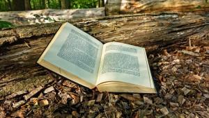 Livres-acupression-intelligence-plantes