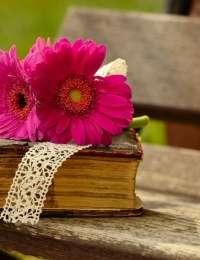 Livres : L'ivresse des plantes, Ma cuisine de légumes d'automne et d'hiver et Algues marines : propriétés, usages, recettes