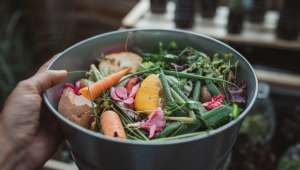 Composter ses restes organiques