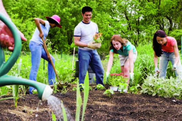 Economie collaborative : Échanger, partager
