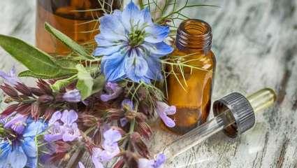 Traiter la grippe avec la phytothérapie