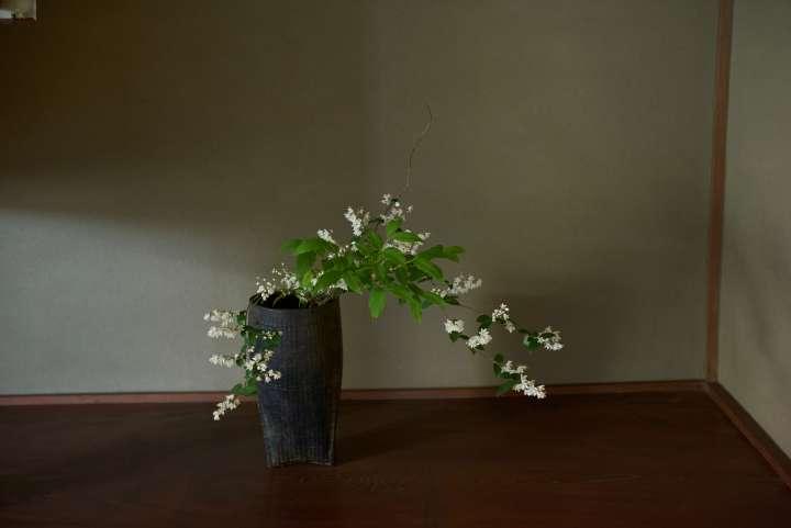Le hanakaï, une cérémonie  de contemplation des fleurs