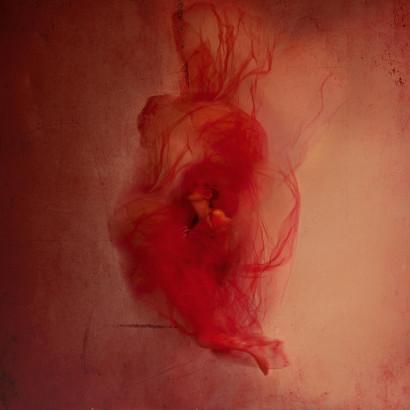 Le sang, prolongement du cœur