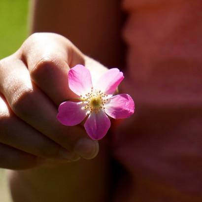 Gratitude - Fleur