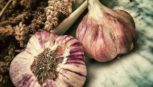 L'ail permet à coup sûr de freiner l'oxydation du bon cholestérol