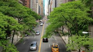Dépolluer l'air des villes