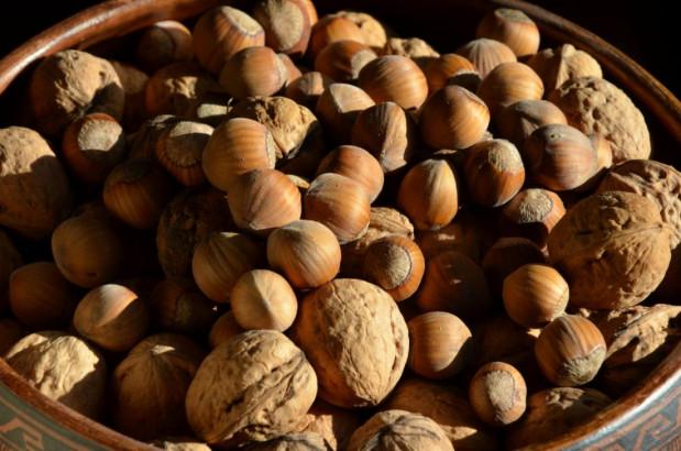 À côté de sa richesse exceptionnelle en lipides de qualité, la noisette est riche en vitamine E.
