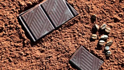 La consommation quotidienne de 100 g de chocolat noir peut diminuer la pression artérielle.
