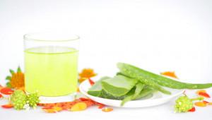 Le gel d'aloe vera est un régulateur biologique immunostimulant, tonifiant, vivifiant et régénérateur.