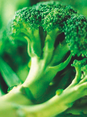 Brocoli contre le cancer