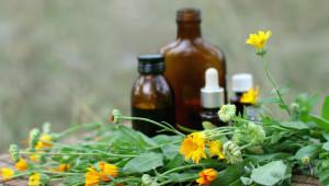 Bientôt un médicament booster d'antibiotiques à base d'huiles essentielles
