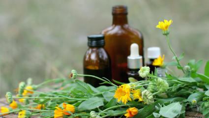 Médicament booster d'antibiotiques à base d'huiles essentielles