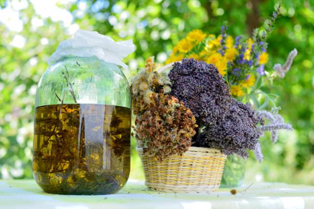 Solstice d'été: l'alchimie plante-soleil !