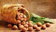 Noix : coques en stock pour l'hiver