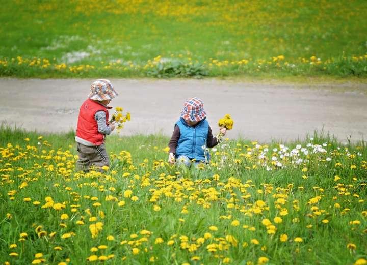 Chez l'enfant, la voie orale est déconseillée avant quatre ans.