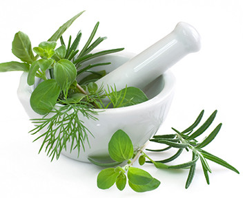 Anti-fatigue : 5 plantes qui boostent