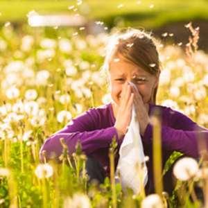 rhinite allergique