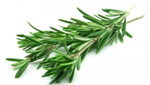 Soigner les myalgies avec les plantes