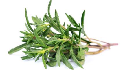 Aromathérapie : le thym