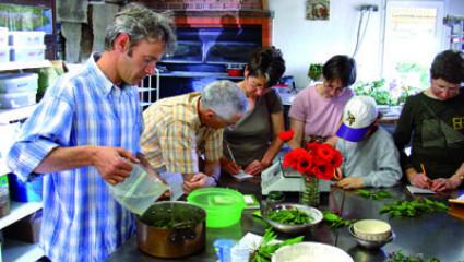 Plantes médicinales : Bruno Delaunay, le jardinier du pain