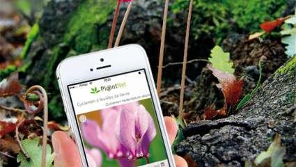 Découvrir les outils numériques et applications internet des végétaux