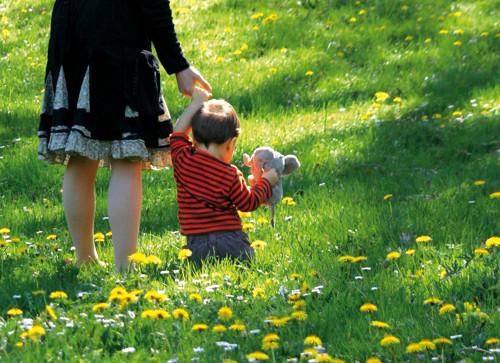 Elixirs floraux : calmer les peur de nos enfants