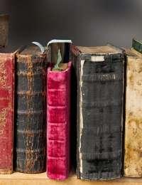 Livres : L'intelligence émotionnelle des plantes, la gériatrie par les huiles essentielles