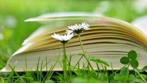 Livres : L'herbier de Marcel Proust, Je me libère du sucre