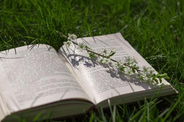 Livres : Jardins d'hiver, La fleurette et le camionneur
