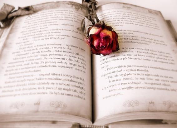 Livres : La bible des plantes aromatiques, Boissons remèdes ...