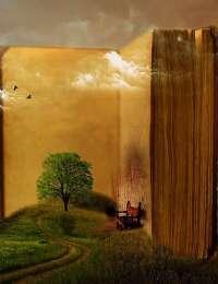 Livres : Un festin de nature, Les recettes secrètes de mon herbaliste et Tout peut changer