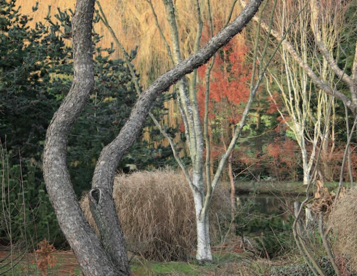 L'étang de Launay