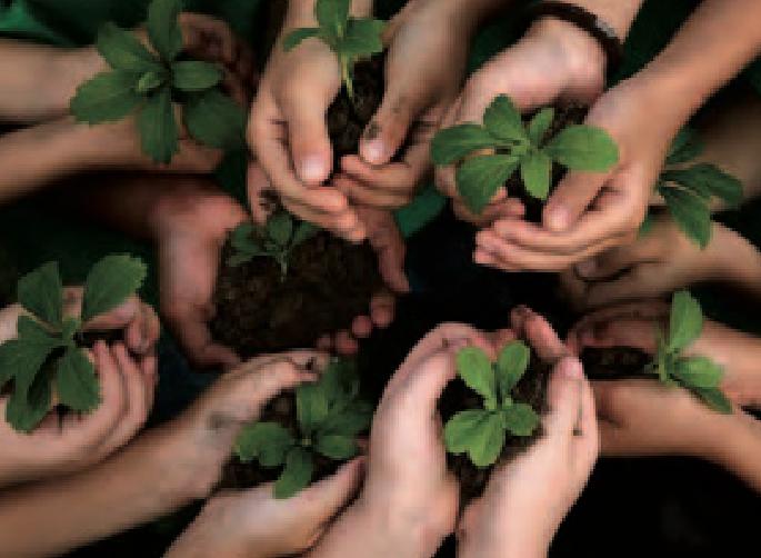 Solidarité avec la nature