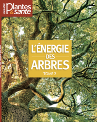 Hors-série Energie des arbres Tome II