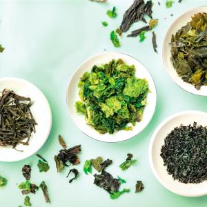 Assiettes d'algues