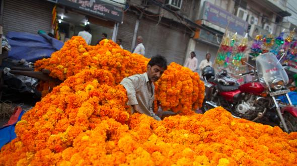 À new Delhi, en Inde, un vendeur de fleurs à l'occasion du Diwali, le festival des lumières dédié à la déesse Lakshmi.