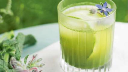Jus de concombre, bourrache et laitue, recette et photo de Michael Isted.