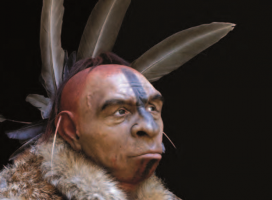 Les plantes de Néandertal