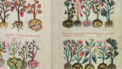Extrait du Codex De la Cruz-Badiano