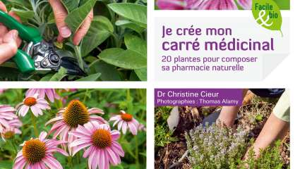 Je crée mon carré médicinal - Christine Cieur