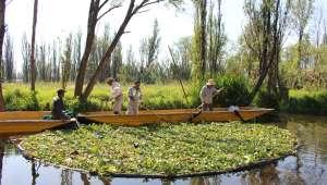 Les jardins flottants des Aztèques