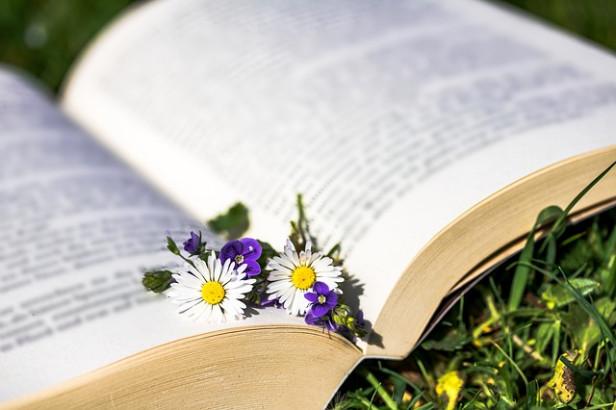 Livres Les plantes qui guérissent, qui nourrissent, qui décorent ...