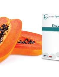 Enzymae