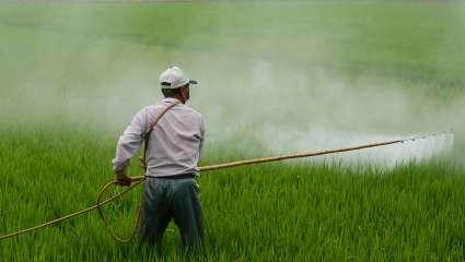 +23% de ventes de pesticides en 2018.