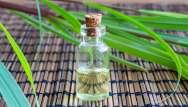 L'huile essentielle de citronnelle contre les moustiques