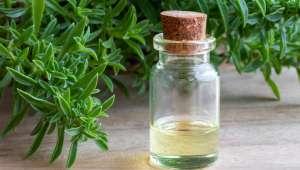 L'aromathérapie pour soigner les cystites