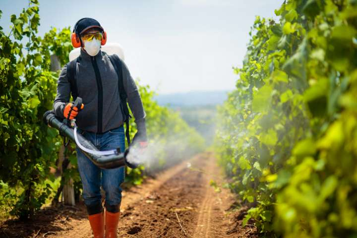Un rapport accable à nouveau les pesticides
