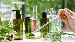 Covid-19 : nouvelles pistes prometteuses en phytothérapie
