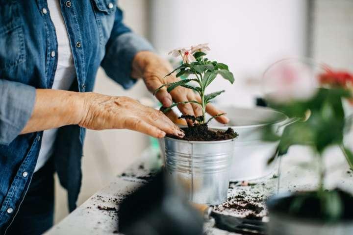 Bénéfices santé jardinage personnes âgées