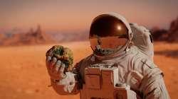 Des cyanobactéries sur Mars